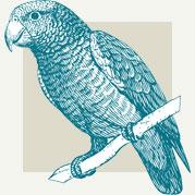 Birds of Paradise Art