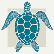 Sea Turtle Decor