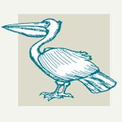 Sea Birds Decor