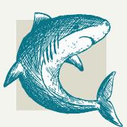 Shark Decorations