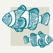 Fish Decor