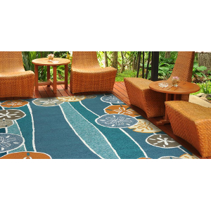Perfect Indoor Outdoor Rugs