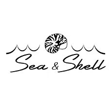 Sea And Shell