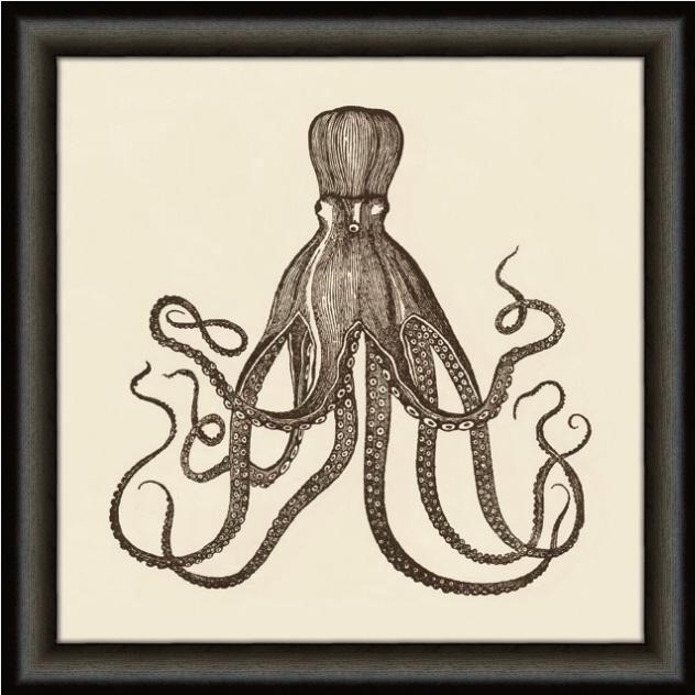 Octopus Framed Art