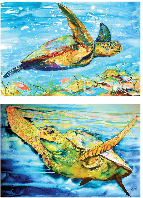 Sea Turtles Wall Canvas 16x20