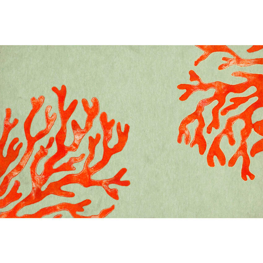 Coral Red Indoor Outdoor Rug