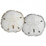 Sand Dollar Shaped Indoor Outdoor Pillow