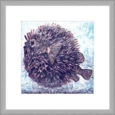 Charcoal Blowfish Giclee Print in Wood Frame