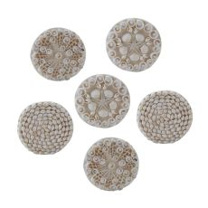 Shell Coasters - Set of 6