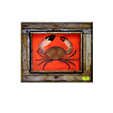 Colossal Claws Framed Art Print