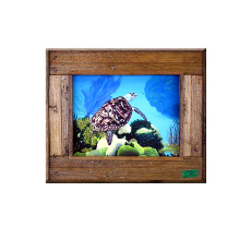 Aloha Honu Framed At Print