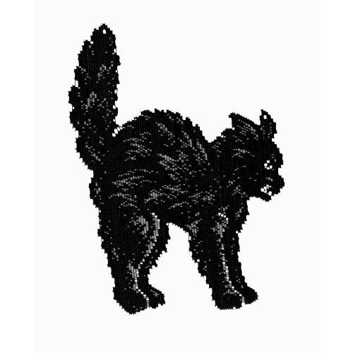 Scaredy-Cat, Black