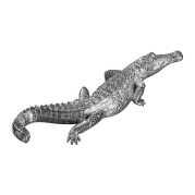 Uttermost Swamp Beast Silver Crocodile Sculpture