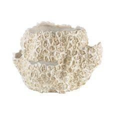 Cretaceous Shell Bowl