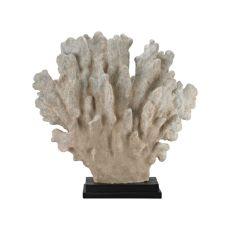 Cretaceous Coral Sculpture