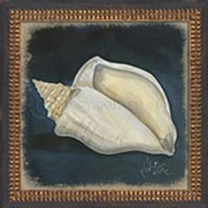 Seashell No4 Framed Art
