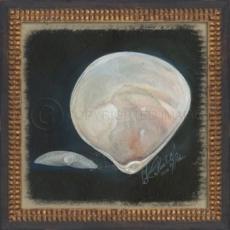 Seashell No5 Framed Art