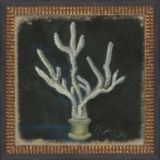 Seashell No6 Framed Art