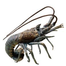 Night Walker Florida Lobster Sculpture