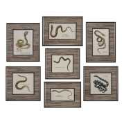 Uttermost Snakes Under Glass Prints S/7