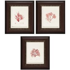 Nature II/III/IV Framed Art
