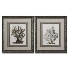 Antique Coral I, II, Framed Art S/2