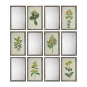 Uttermost Diamond Florals and Mirrors Set S/12