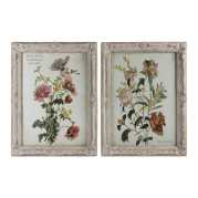 Uttermost Mimosa and Baguenaudier Floral Art S/2