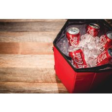 Bongo Cooler- Red