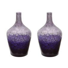 Plum Ombre Bottle - Set Of 2