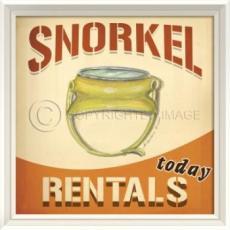 Snorkel Rentals Framed Art