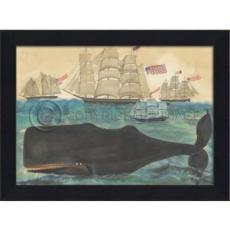 Nantucket Signals Whale Framed Art