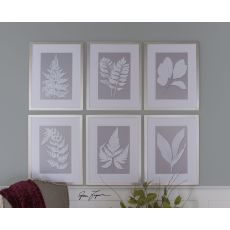 Uttermost Moonlight Ferns Framed Art, S/6