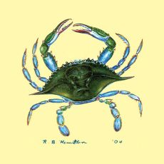 Blue Crab Coaster Set Of 4