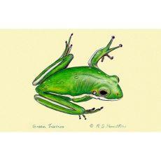 Green Tree Frog Door Mat 18X26