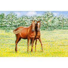 Horses Door Mat 18X26
