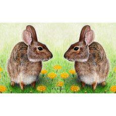 Rabbits Door Mat 18X26