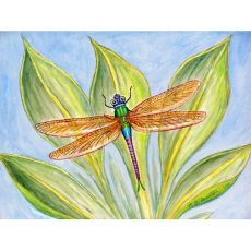 Dick'S Dragonfly Door Mat 30X50