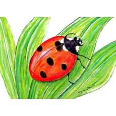 Lady Bug Door Mat 18X26