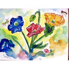 Bugs & Poppies Door Mat 30X50