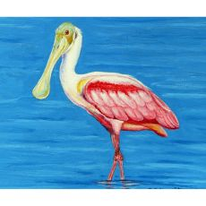Dick'S Spoonbill Door Mat 18X26