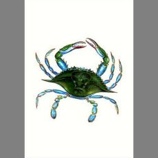 Female Blue Crab Flag 12.5X18
