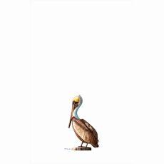 Pelican Left Kitchen Towel
