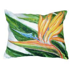 Bird Of Paradise No Cord Pillow 16X20