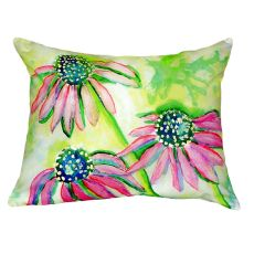 Cone Flowers No Cord Pillow 16X20
