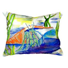 Hermit Crab No Cord Pillow 16X20