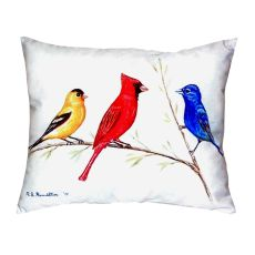 Three Birds No Cord Pillow 16X20