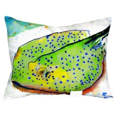 Stingray No Cord Pillow 16X20