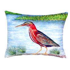 Green Heron Ii No Cord Pillow 16X20
