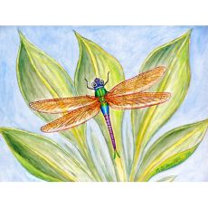 Dick'S Dragonfly Place Mat Set Of 4